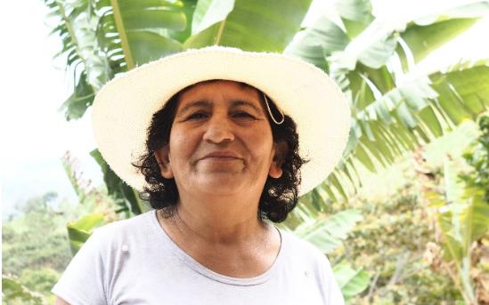CAES Perú